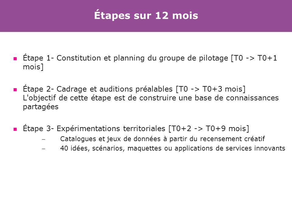 Étapes sur 12 mois Étape 1- Constitution et planning du groupe de pilotage [T0 -> T0+1 mois] Étape 2- Cadrage et auditions préalables [T0 -> T0+3 mois