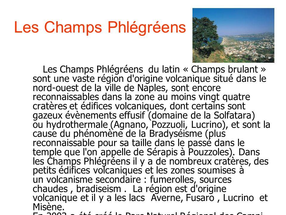 Les Champs Phlégréens Les Champs Phlégréens du latin « Champs brulant » sont une vaste région d'origine volcanique situé dans le nord-ouest de la vill