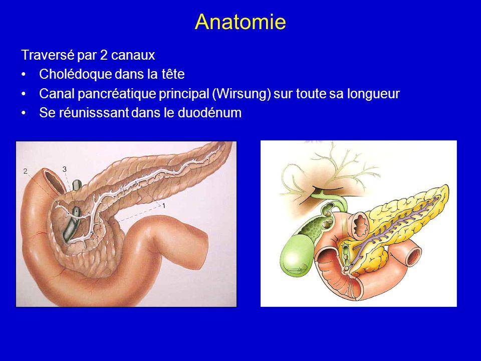 Anatomie Traversé par 2 canaux Cholédoque dans la tête Canal pancréatique principal (Wirsung) sur toute sa longueur Se réunisssant dans le duodénum