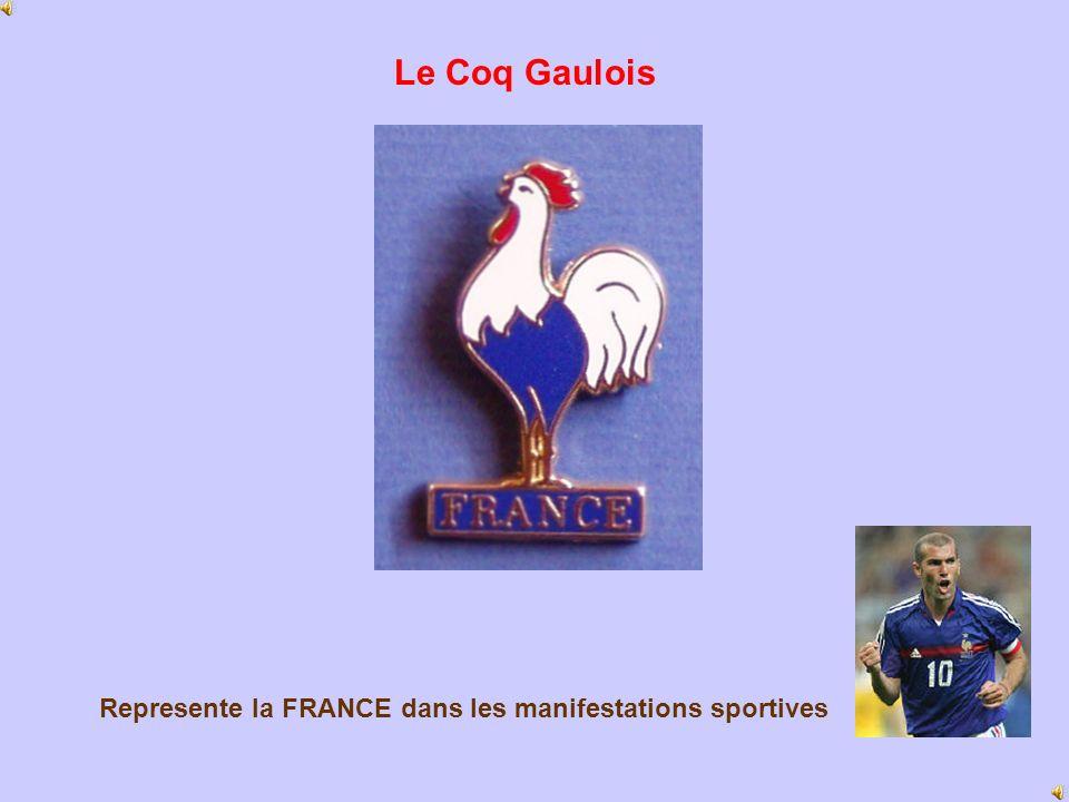 Le Coq Gaulois Represente la FRANCE dans les manifestations sportives