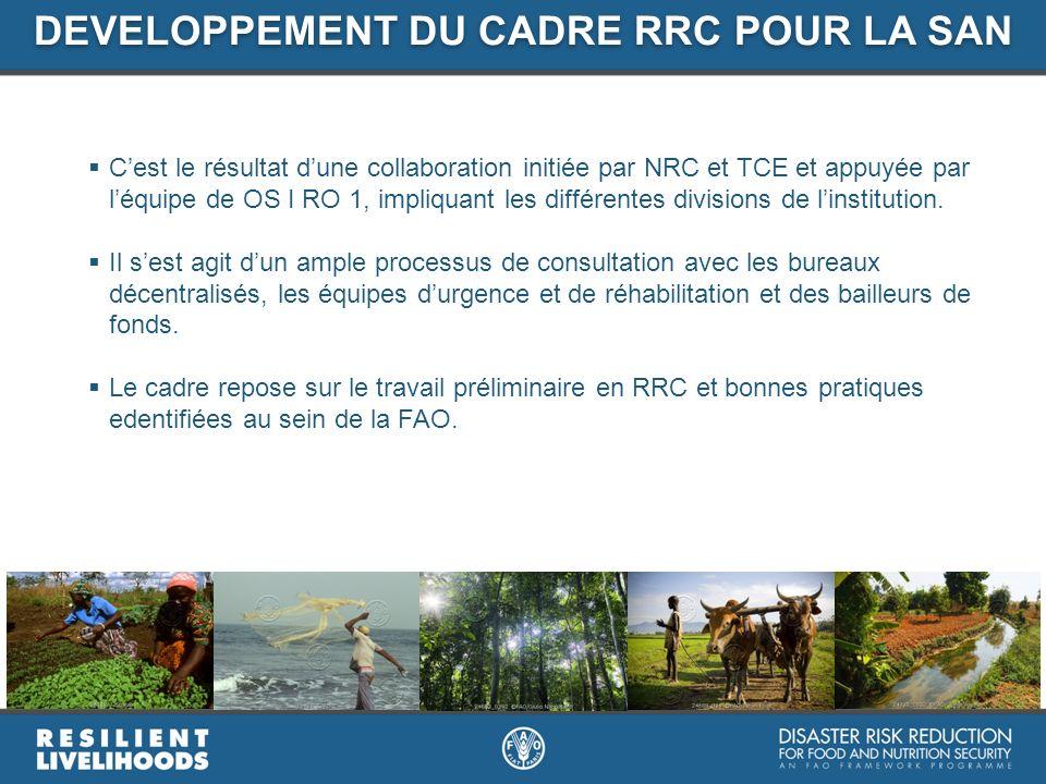 Cest le résultat dune collaboration initiée par NRC et TCE et appuyée par léquipe de OS I RO 1, impliquant les différentes divisions de linstitution.