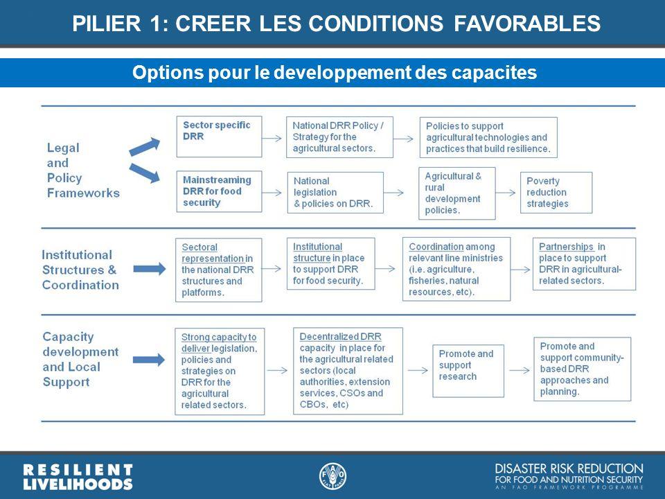 PILIER 1: CREER LES CONDITIONS FAVORABLES Options pour le developpement des capacites
