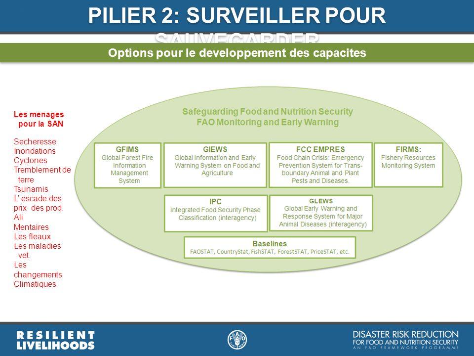 PILIER 2: SURVEILLER POUR SAUVEGARDER Options pour le developpement des capacites Les menages pour la SAN Secheresse Inondations Cyclones Tremblement