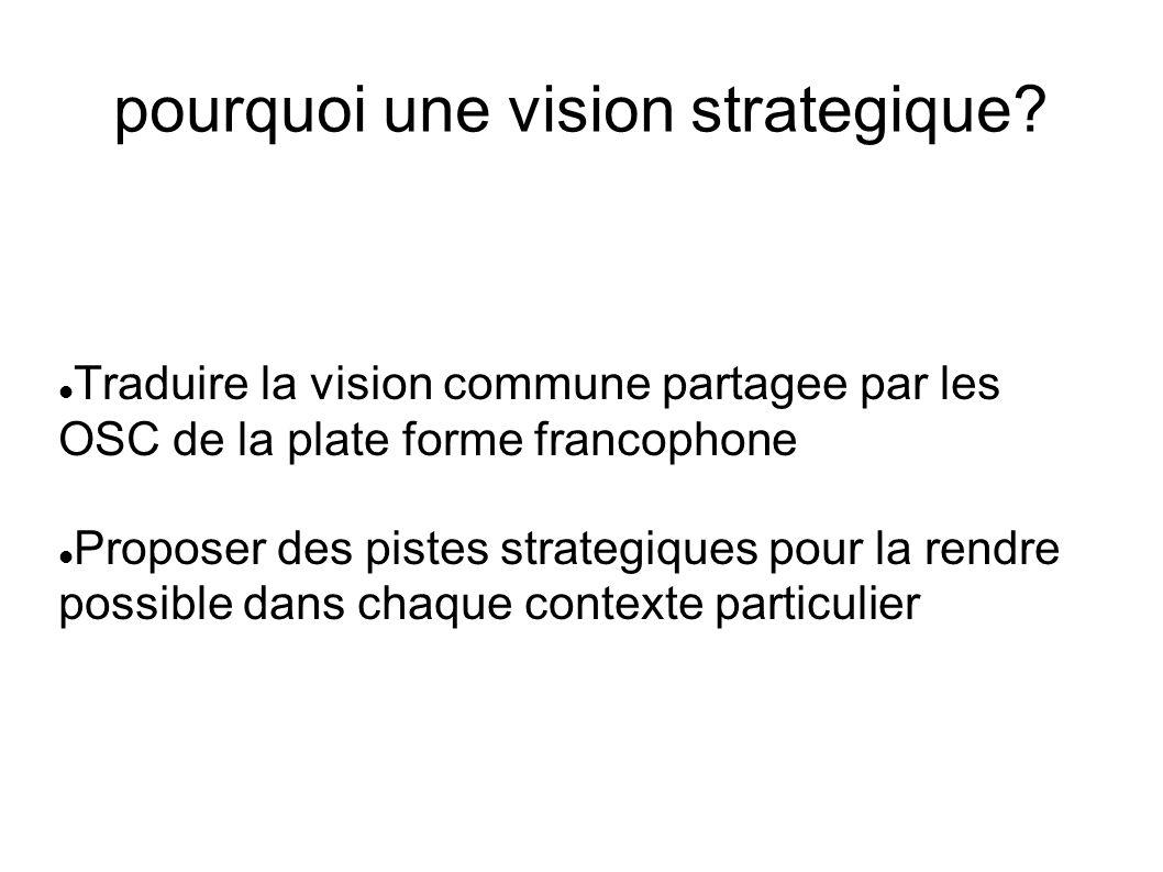 pourquoi une vision strategique.