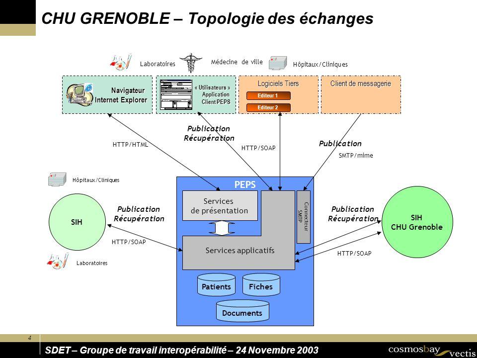 4 SDET – Groupe de travail interopérabilité – 24 Novembre 2003 PEPS SIH SIH CHU Grenoble Hôpitaux/Cliniques Laboratoires PatientsFiches Documents Publ