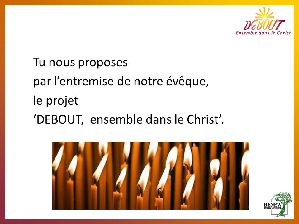 Tu nous proposes par lentremise de notre évêque, le projet DEBOUT, ensemble dans le Christ.