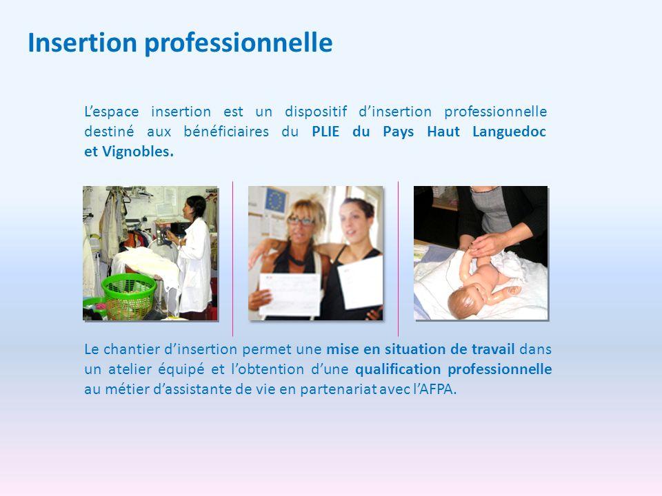 Insertion professionnelle Lespace insertion est un dispositif dinsertion professionnelle destiné aux bénéficiaires du PLIE du Pays Haut Languedoc et V