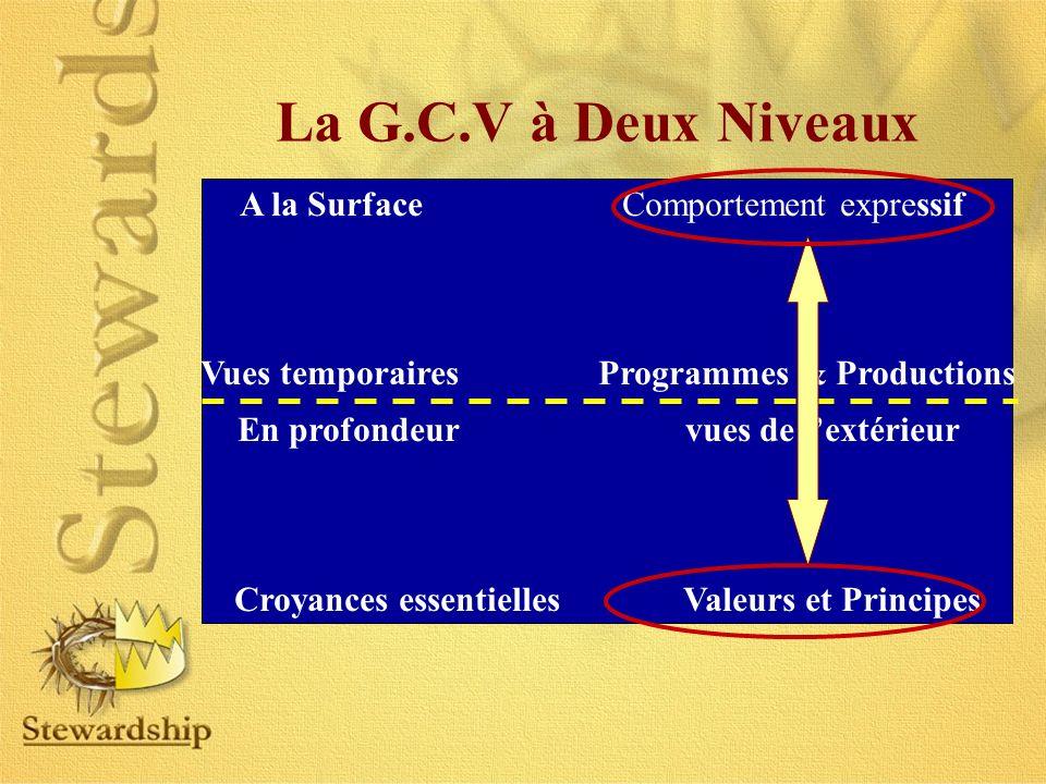 A la Surface Comportement expressif Vues temporaires Programmes & Productions En profondeur vues de lextérieur Croyances essentielles Valeurs et Princ