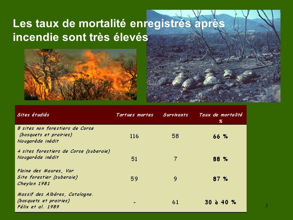 3 Les taux de mortalité enregistrés après incendie sont très élevés