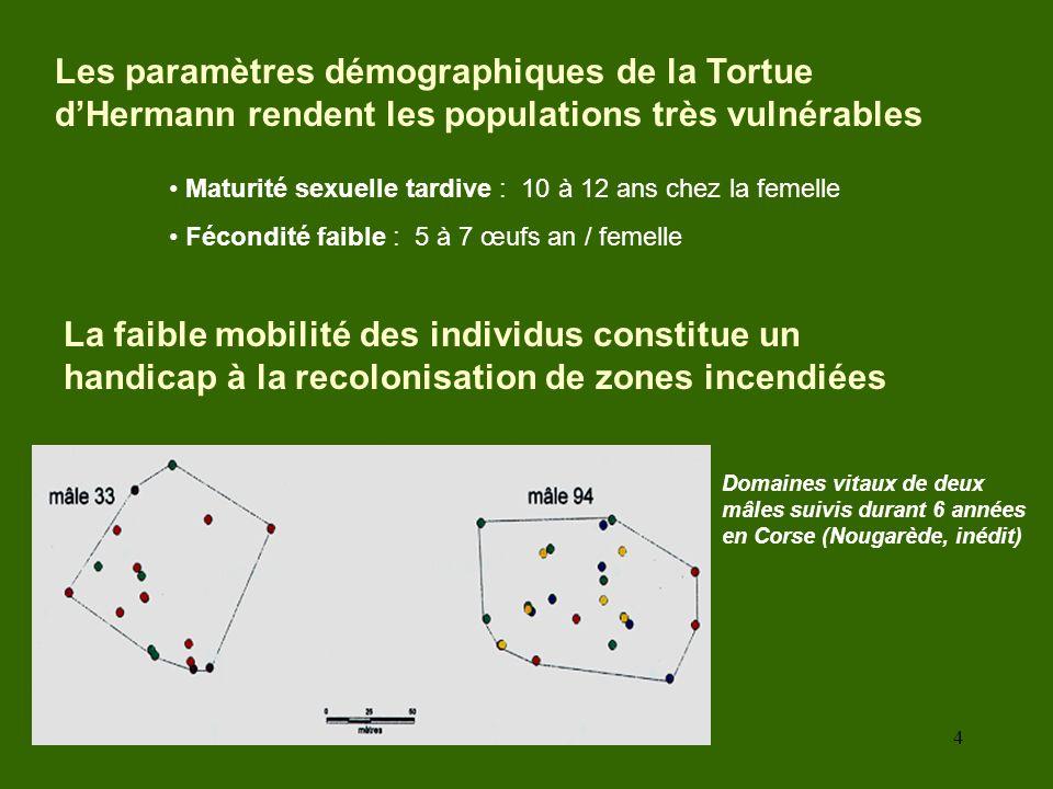 4 La faible mobilité des individus constitue un handicap à la recolonisation de zones incendiées Domaines vitaux de deux mâles suivis durant 6 années