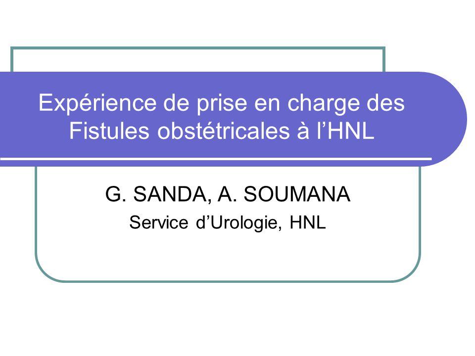 Expérience de prise en charge des Fistules obstétricales à lHNL G. SANDA, A. SOUMANA Service dUrologie, HNL