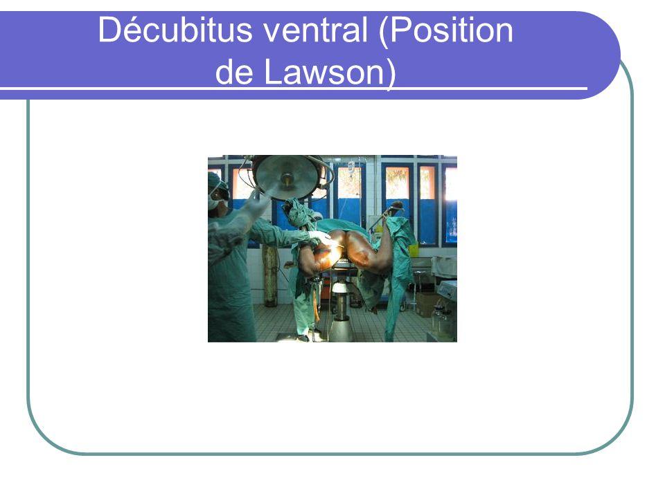 Décubitus ventral (Position de Lawson)