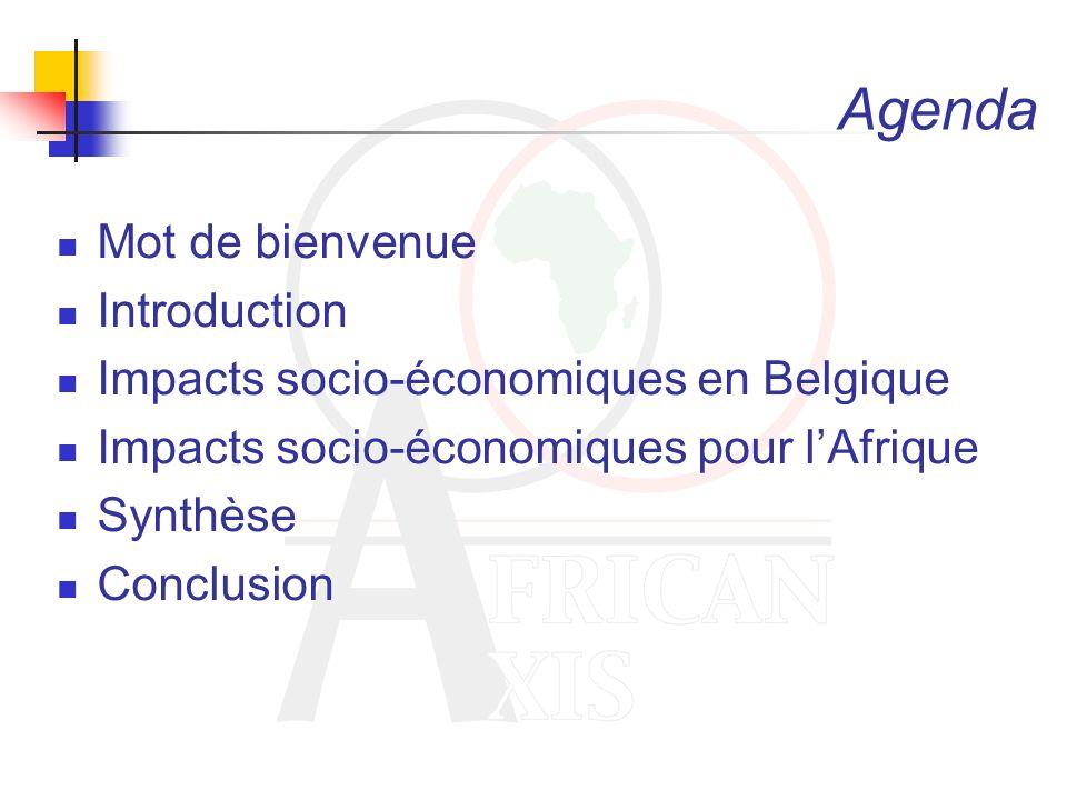 Agenda Mot de bienvenue Introduction Impacts socio-économiques en Belgique Impacts socio-économiques pour lAfrique Synthèse Conclusion
