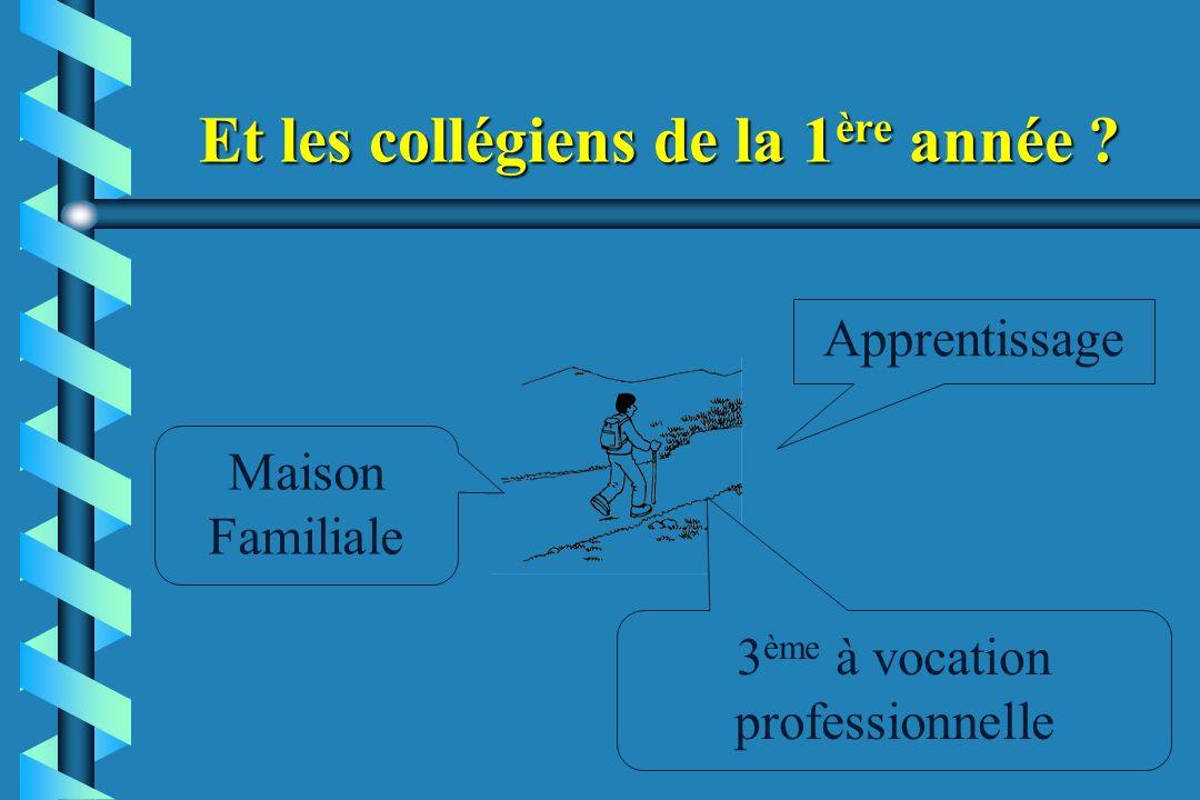 Et les collégiens de la 1 ère année ? Apprentissage Maison Familiale 3 ème à vocation professionnelle