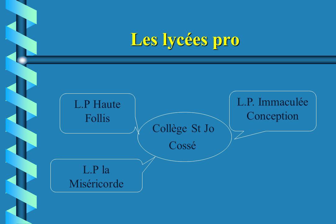 Les lycées pro Collège St Jo Cossé L.P. Immaculée Conception L.P Haute Follis L.P la Miséricorde
