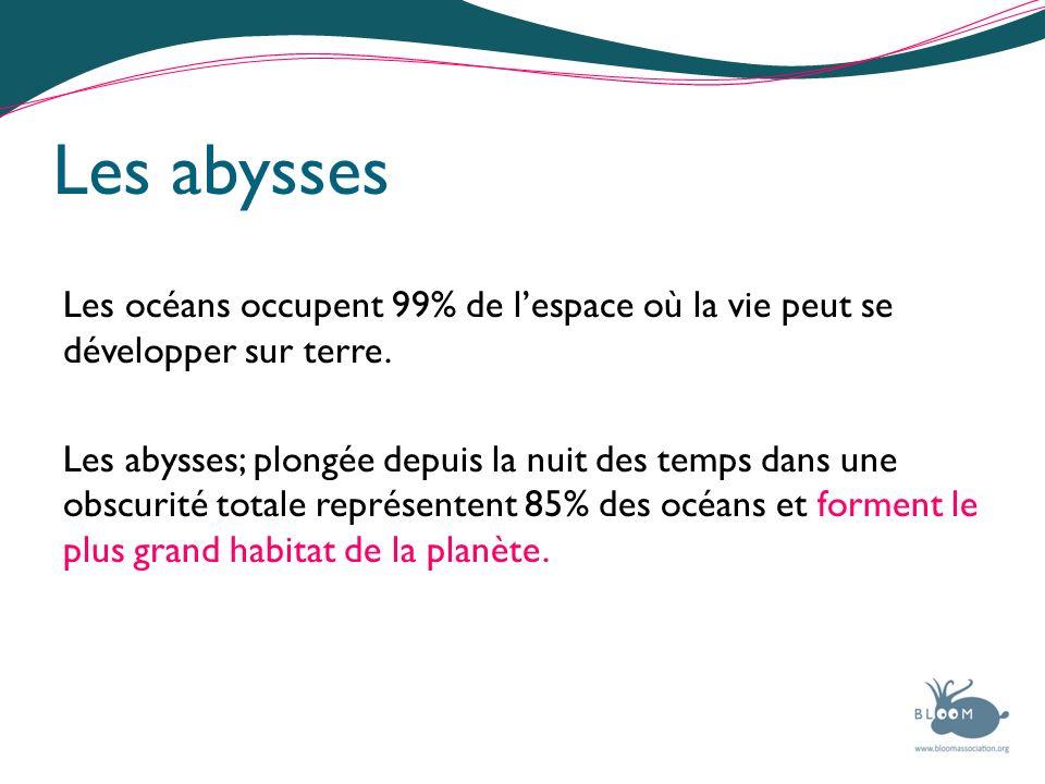 Les abysses Les océans occupent 99% de lespace où la vie peut se développer sur terre. Les abysses; plongée depuis la nuit des temps dans une obscurit