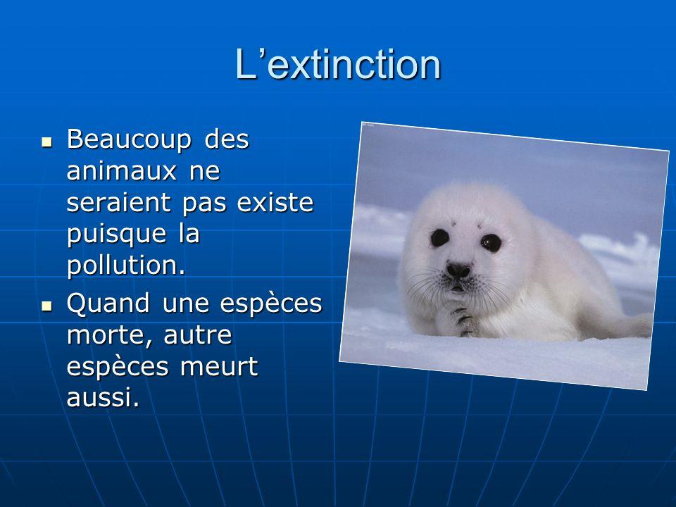 Lextinction Beaucoup des animaux ne seraient pas existe puisque la pollution. Beaucoup des animaux ne seraient pas existe puisque la pollution. Quand