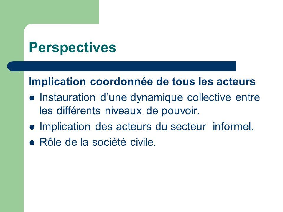 Perspectives Implication coordonnée de tous les acteurs Instauration dune dynamique collective entre les différents niveaux de pouvoir. Implication de
