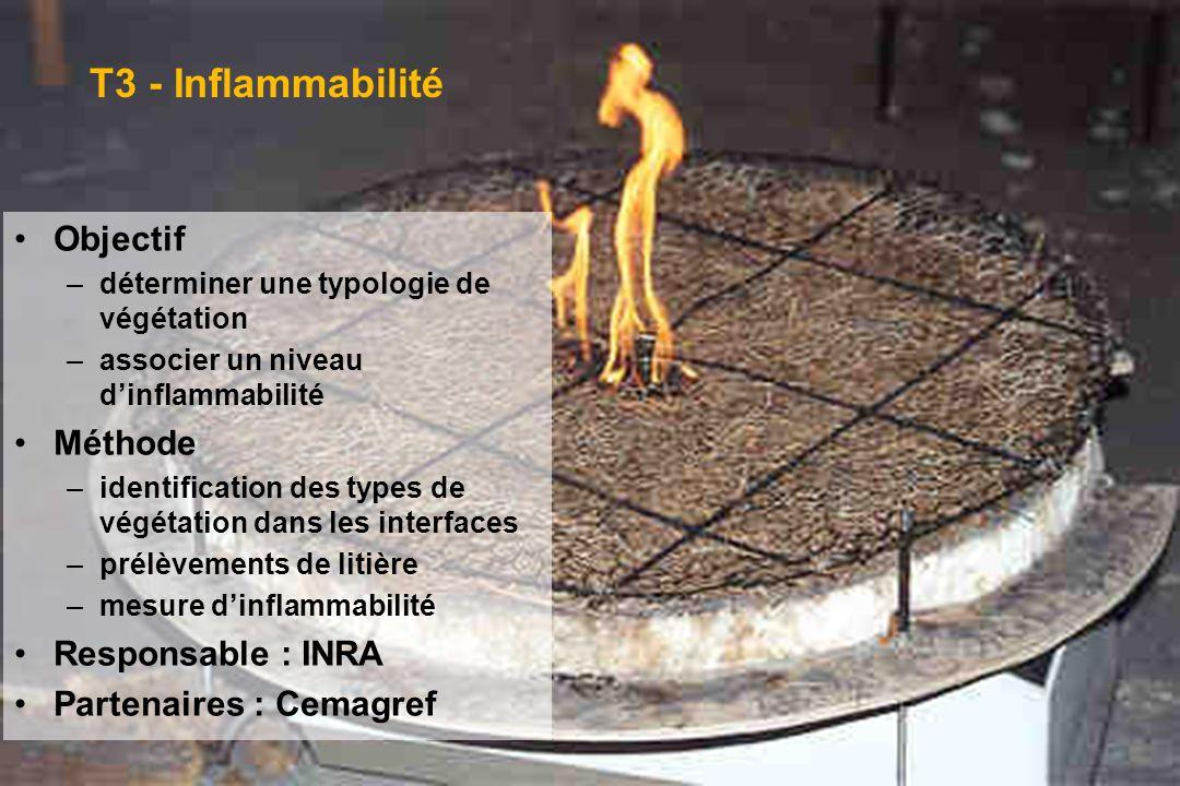 GIS Incendies de Forêt, Aix-en-Provence, 3 juin 20051 T3 - Inflammabilité Objectif –déterminer une typologie de végétation –associer un niveau dinflam