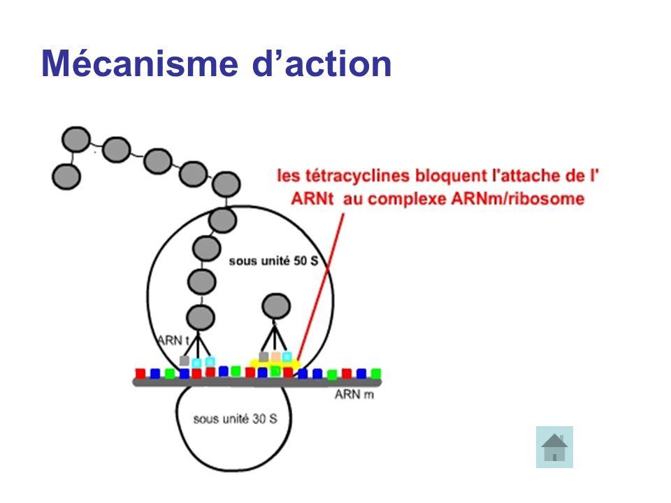 Mécanisme daction