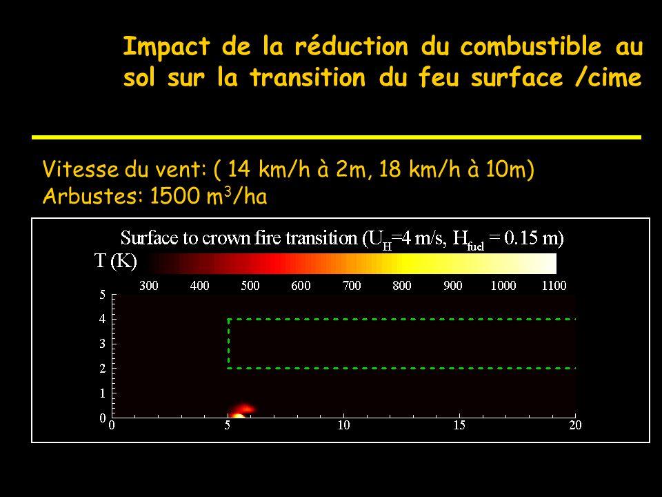 Impact de la réduction du combustible au sol sur la transition du feu surface /cime Vitesse du vent: ( 14 km/h à 2m, 18 km/h à 10m) Arbustes: 5000 m 3
