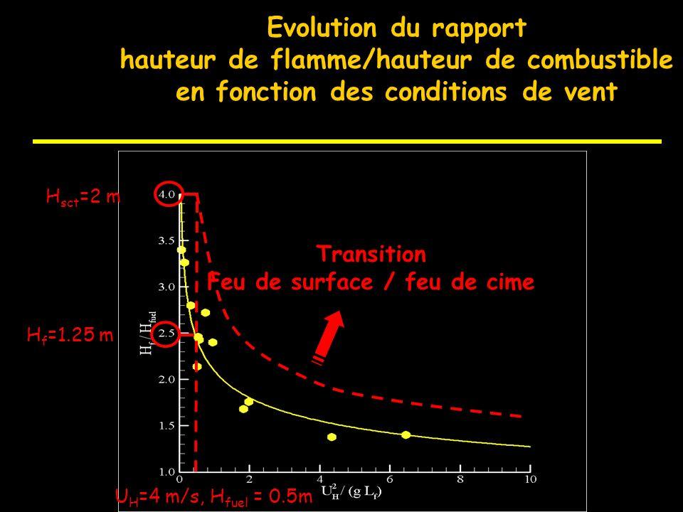Impact de la réduction du combustible au sol sur la transition du feu surface /cime Vitesse du vent: ( 14 km/h à 2m, 18 km/h à 10m) Arbustes: 1500 m 3