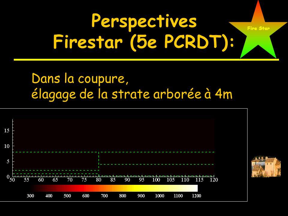 Perspectives Firestar (5e PCRDT): Peuplement Coupure (arbuste: 10000 m 3 /ha) (arbuste: 2500 m 3 /ha) Fire Star Vitesse du vent: 27 km/h (à 10 m)