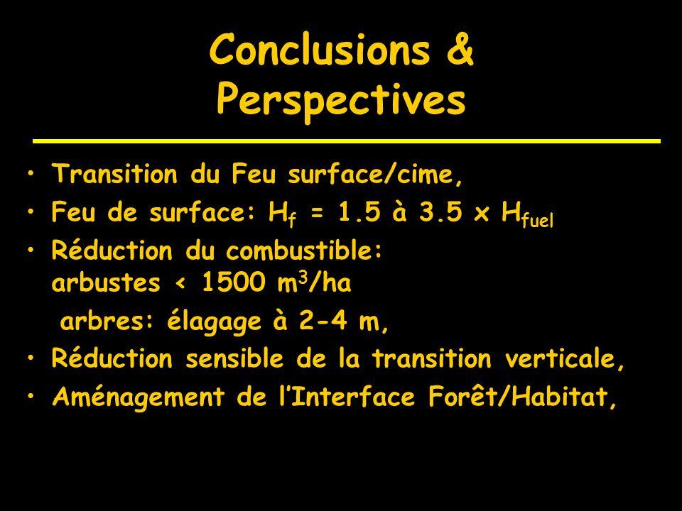 Perspectives Firestar (5e PCRDT): Fire Star Dans la coupure, élagage de la strate arborée à 4m