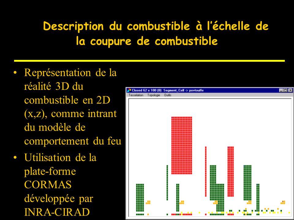 D Description et modélisation du combustible forestier à léchelle de la particule et de lindividu Détermination des caractéristiques des familles de c