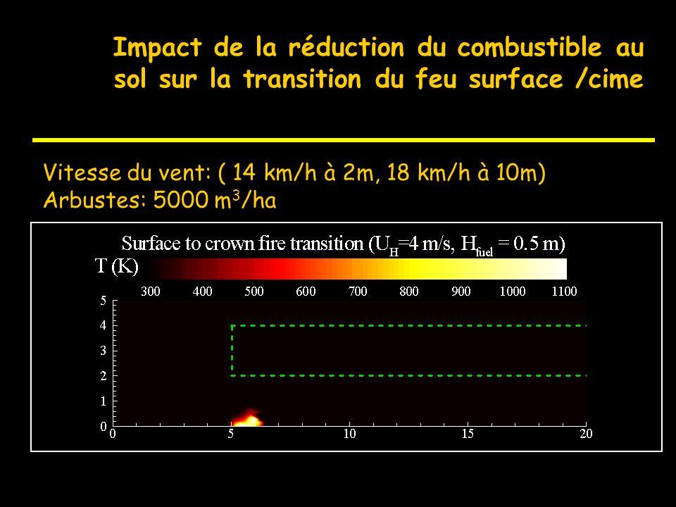 D Description du combustible à léchelle de la coupure de combustible Représentation de la réalité 3D du combustible en 2D (x,z), comme intrant du modè