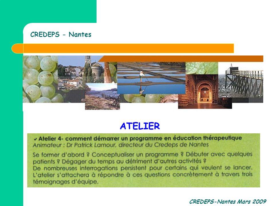 CREDEPS-Nantes Mars 2009 CREDEPS - Nantes ATELIER