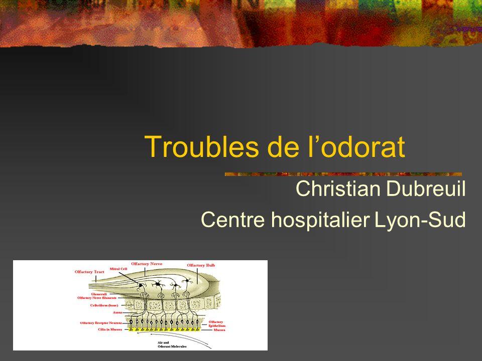Troubles de lodorat Christian Dubreuil Centre hospitalier Lyon-Sud