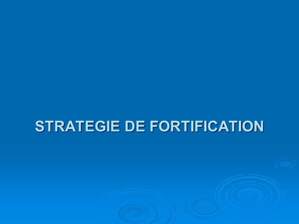 STRATEGIE DE FORTIFICATION