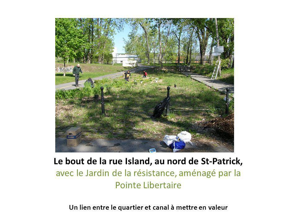 Le bout de la rue Island, au nord de St-Patrick, avec le Jardin de la résistance, aménagé par la Pointe Libertaire Un lien entre le quartier et canal à mettre en valeur