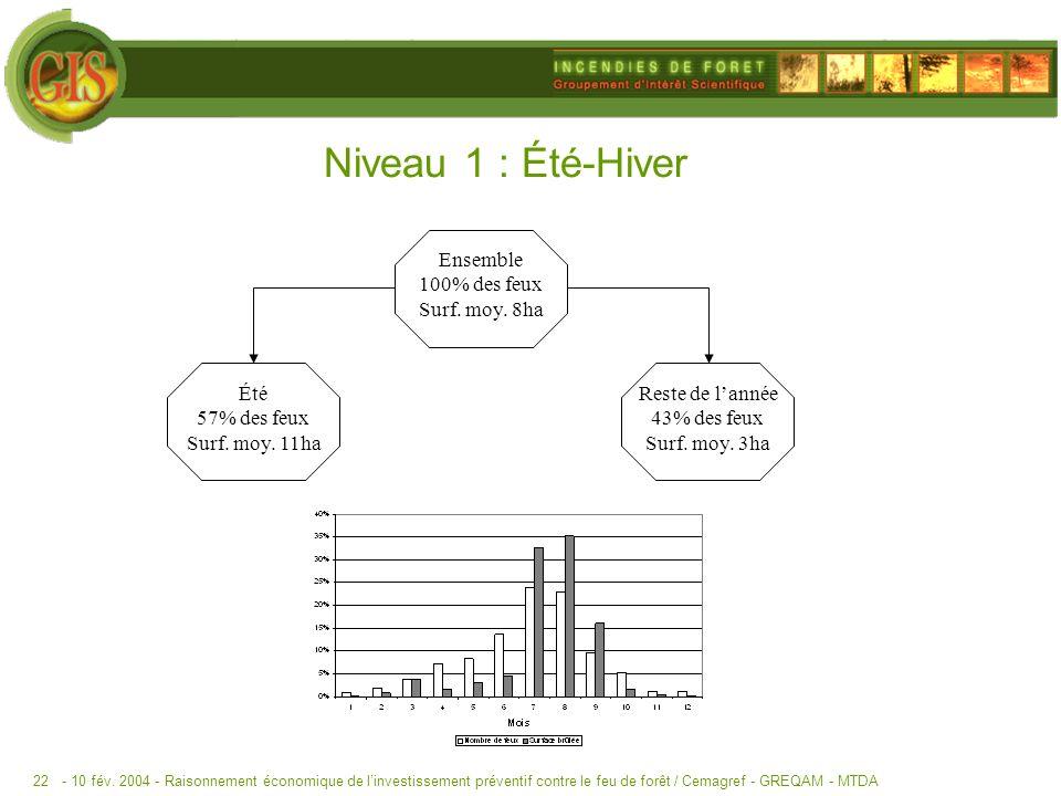 - 10 fév. 2004 -Raisonnement économique de linvestissement préventif contre le feu de forêt / Cemagref - GREQAM - MTDA22 Niveau 1 : Été-Hiver Ensemble