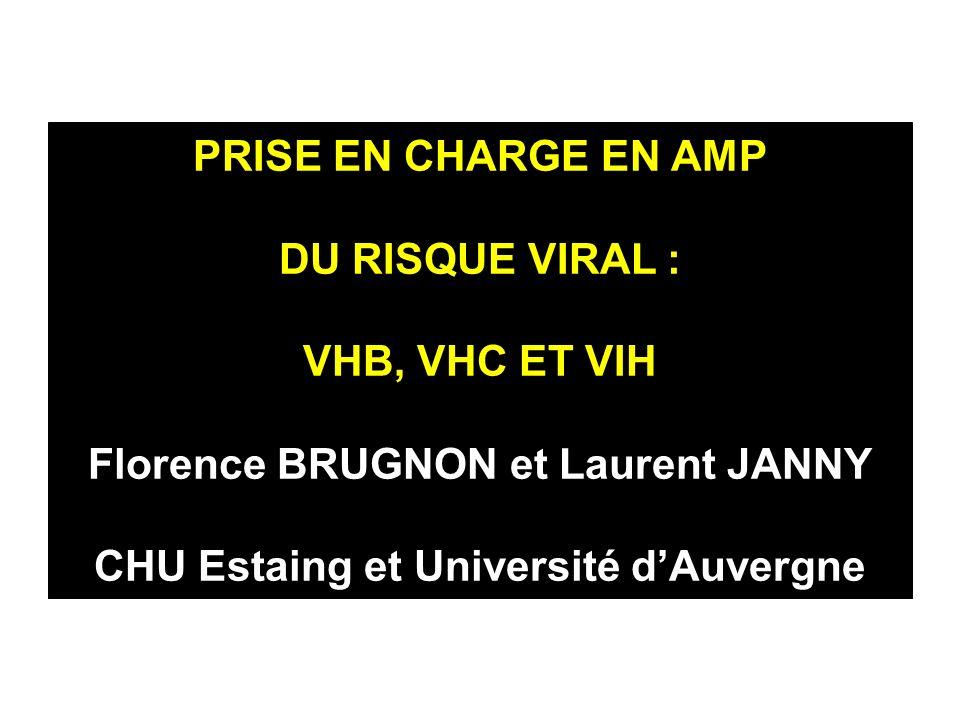 PRISE EN CHARGE EN AMP DU RISQUE VIRAL : VHB, VHC ET VIH Florence BRUGNON et Laurent JANNY CHU Estaing et Université dAuvergne