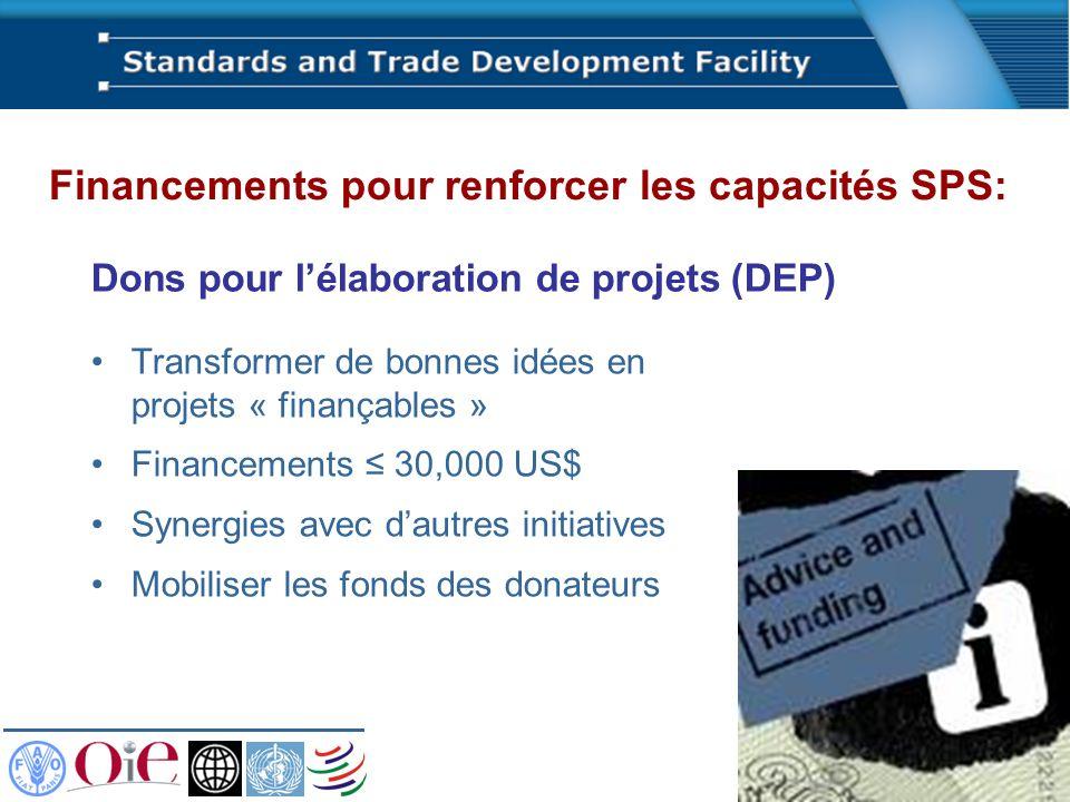 Dons pour lélaboration de projets (DEP) Transformer de bonnes idées en projets « finançables » Financements 30,000 US$ Synergies avec dautres initiati