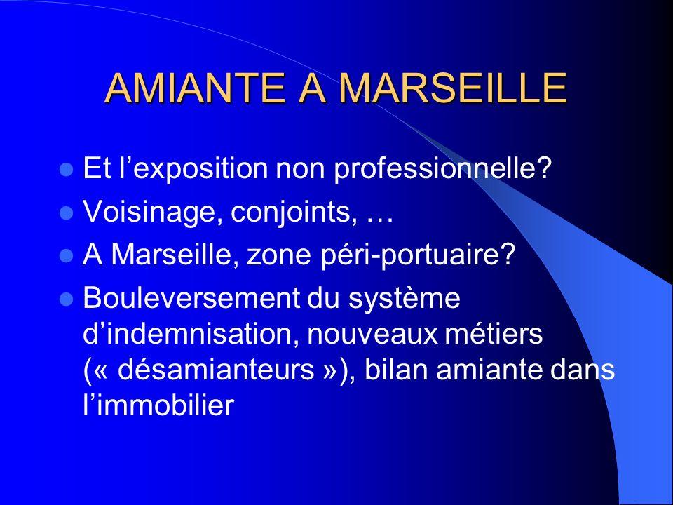 AMIANTE A MARSEILLE Et lexposition non professionnelle? Voisinage, conjoints, … A Marseille, zone péri-portuaire? Bouleversement du système dindemnisa