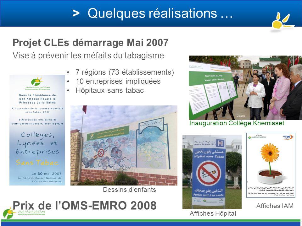 > Quelques réalisations … Projet CLEs démarrage Mai 2007 Vise à prévenir les méfaits du tabagisme 7 régions (73 établissements) 10 entreprises impliqu
