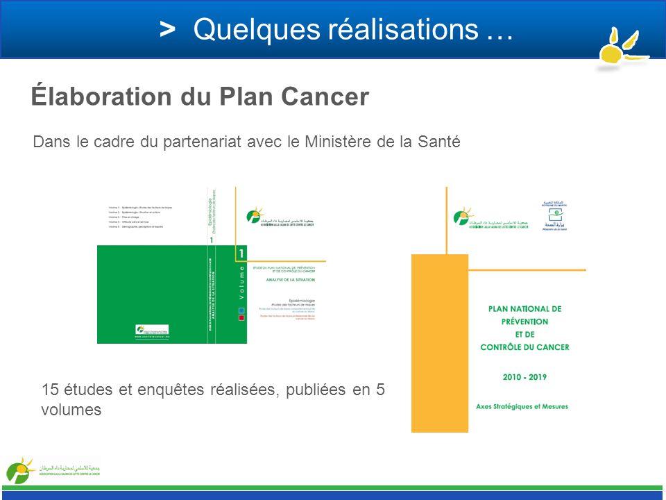 > Quelques réalisations … Élaboration du Plan Cancer Dans le cadre du partenariat avec le Ministère de la Santé 15 études et enquêtes réalisées, publi