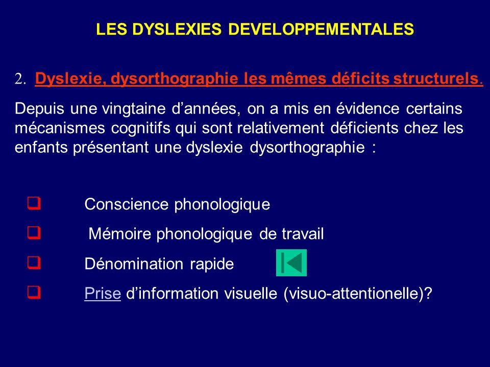 Conscience phonologique Mémoire phonologique de travail Dénomination rapide Prise dinformation visuelle (visuo-attentionelle).