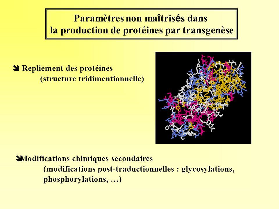 Paramètres non ma î tris é s dans la production de protéines par transgenèse Repliement des protéines (structure tridimentionnelle) îModifications chi