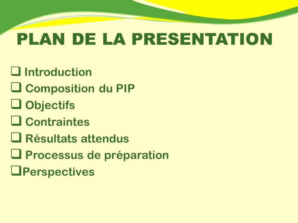 PLAN DE LA PRESENTATION Introduction Composition du PIP Objectifs Contraintes Résultats attendus Processus de préparation Perspectives