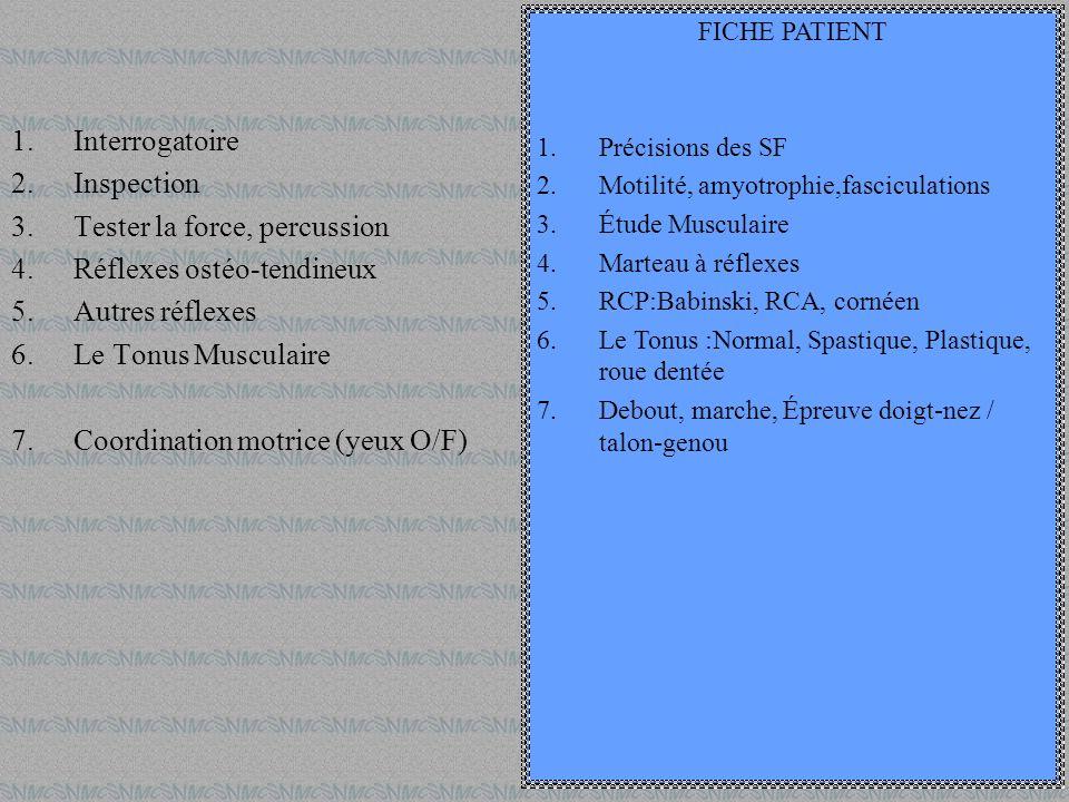 1.Interrogatoire 2.Inspection 3.Tester la force, percussion 4.Réflexes ostéo-tendineux 5.Autres réflexes 6.Le Tonus Musculaire 7.Coordination motrice