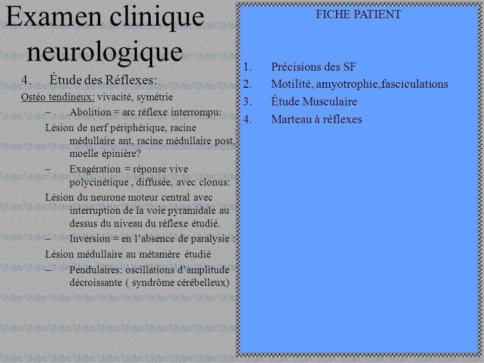 Examen clinique neurologique 4.Étude des Réflexes: Ostéo tendineux: vivacité, symétrie –Abolition = arc réflexe interrompu: Lésion de nerf périphériqu