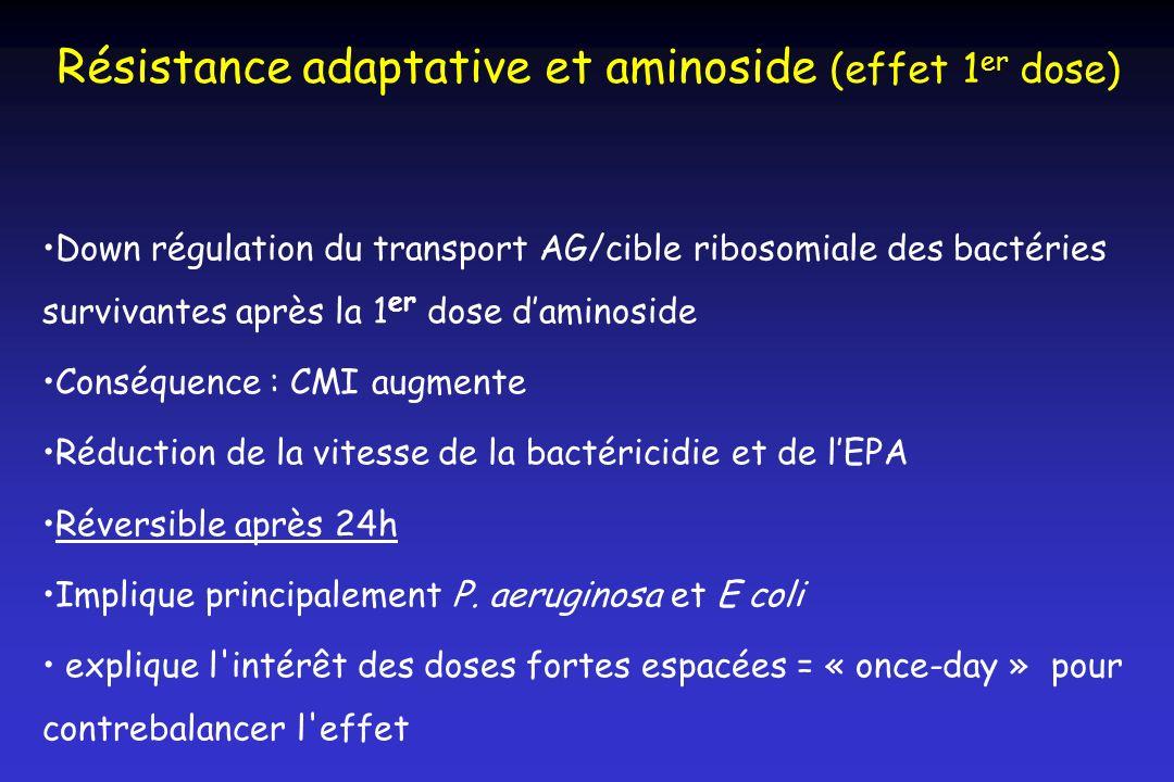 Résistance adaptative et aminoside (effet 1 er dose) Down régulation du transport AG/cible ribosomiale des bactéries survivantes après la 1 er dose da
