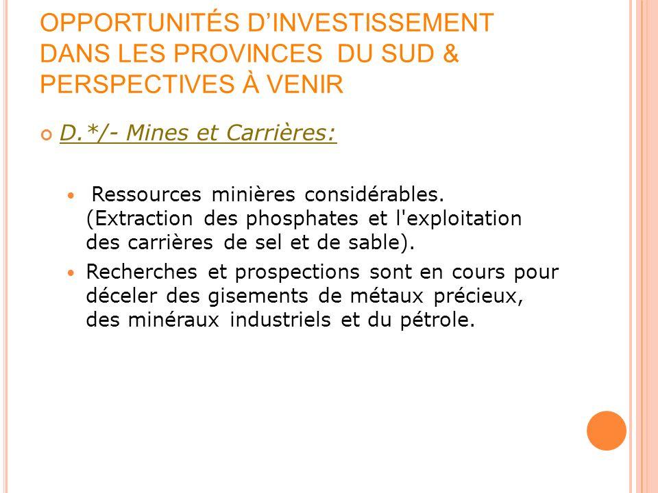 OPPORTUNITÉS DINVESTISSEMENT DANS LES PROVINCES DU SUD & PERSPECTIVES À VENIR D.*/- Mines et Carrières: Ressources minières considérables. (Extraction