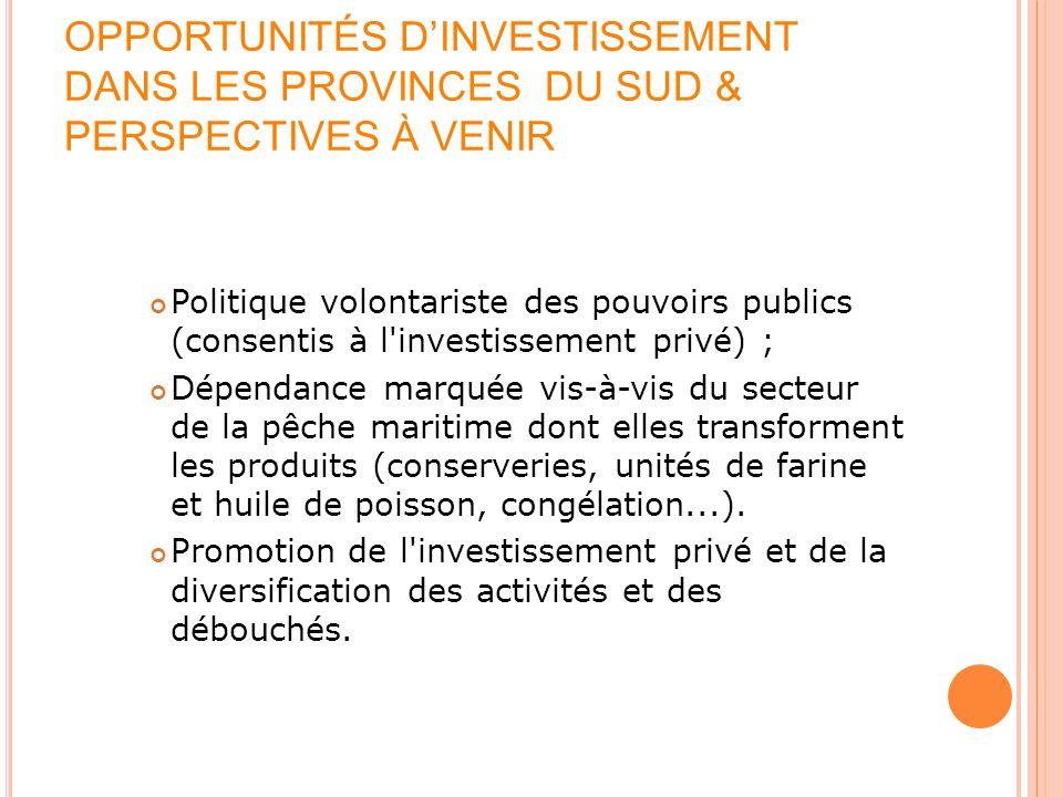 OPPORTUNITÉS DINVESTISSEMENT DANS LES PROVINCES DU SUD & PERSPECTIVES À VENIR Politique volontariste des pouvoirs publics (consentis à l'investissemen