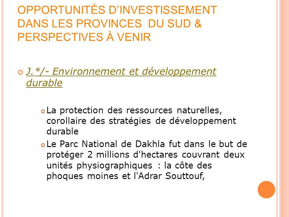 OPPORTUNITÉS DINVESTISSEMENT DANS LES PROVINCES DU SUD & PERSPECTIVES À VENIR J.*/- Environnement et développement durable La protection des ressource