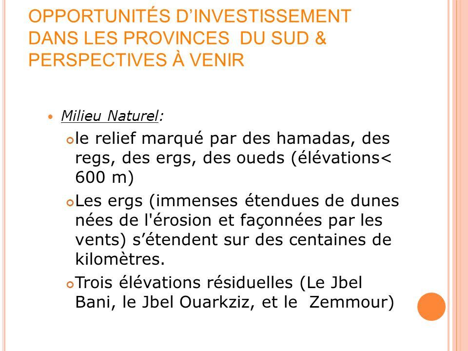 OPPORTUNITÉS DINVESTISSEMENT DANS LES PROVINCES DU SUD & PERSPECTIVES À VENIR Le climat: Relativement modéré et varié Guelmim-Es-Semara: saharien.